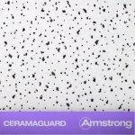 Ceramaguard_2